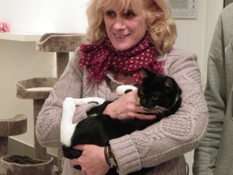 showtimes5 la pension des 3 chats pension pour chats dans le 77 ile de france paris. Black Bedroom Furniture Sets. Home Design Ideas
